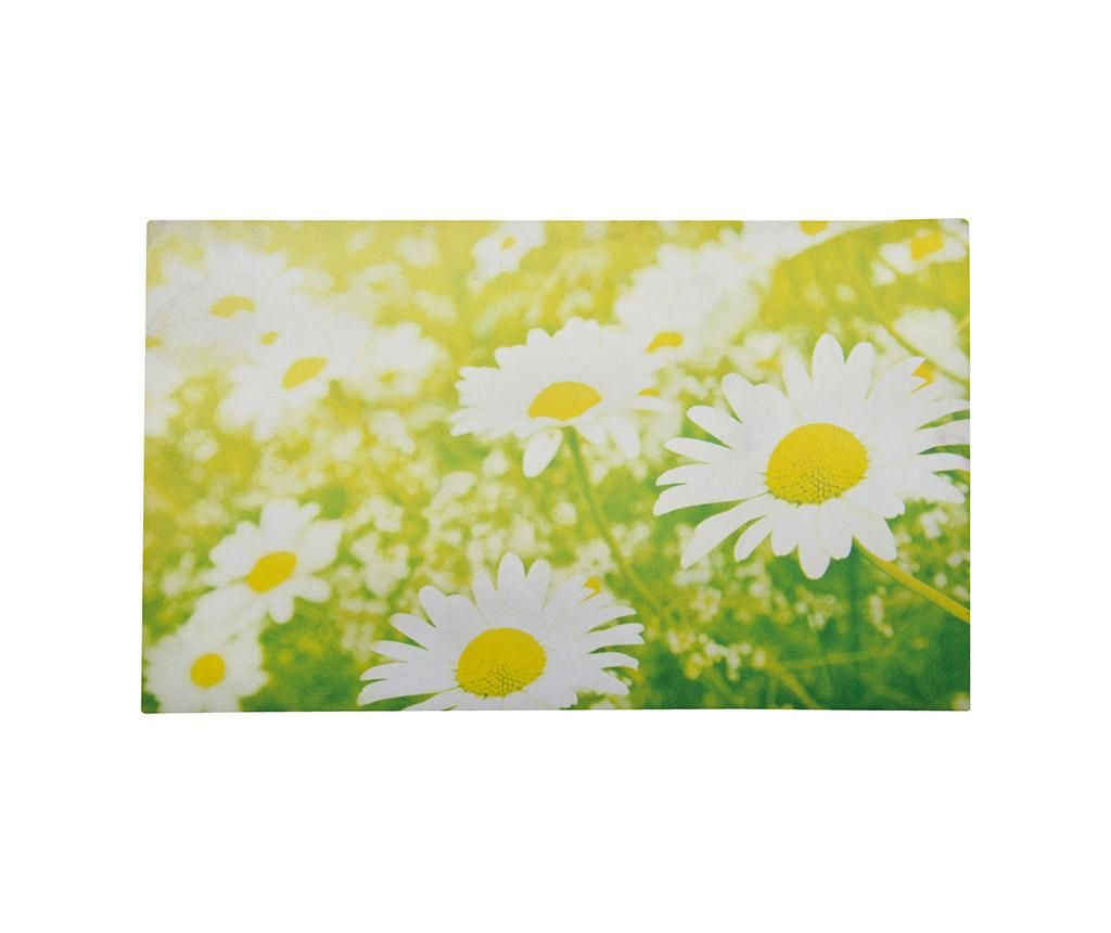 Rohožka Daisy 45.5x76 cm