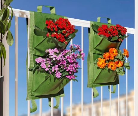 Set 2 držača za biljke Green Caitlyn