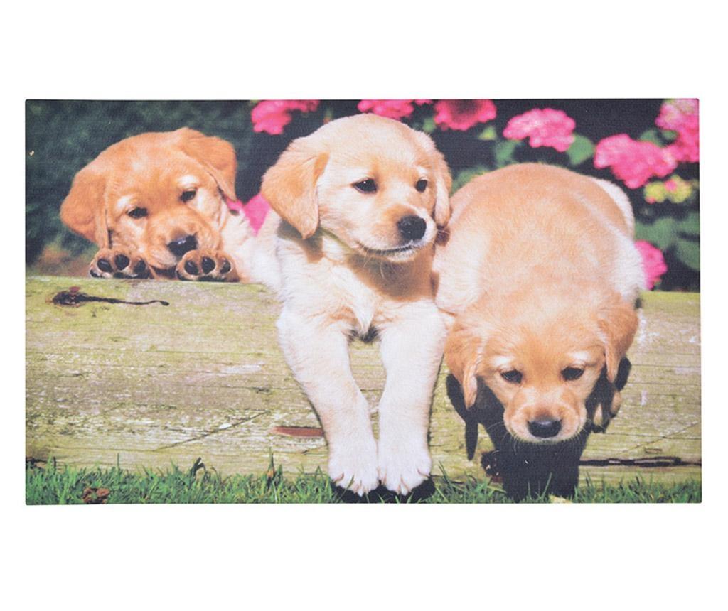 Predpražnik Puppies 45.5x76 cm