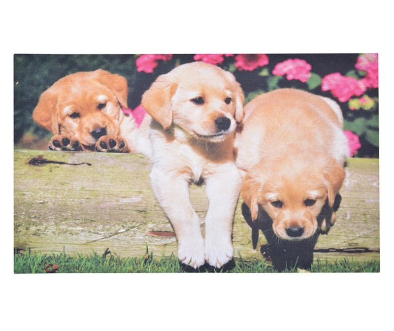 Covoras de intrare Puppies 45.5x76 cm