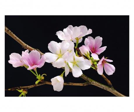 Тапет Cherry Blossoms 115x175 см