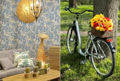 Cu bicicleta în țara lalelelor