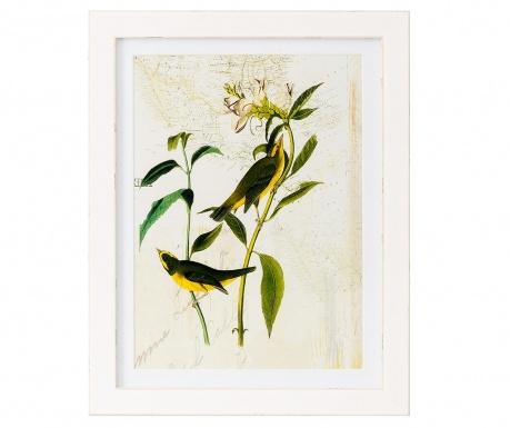 Картина Botanics Geograph 35x45 см