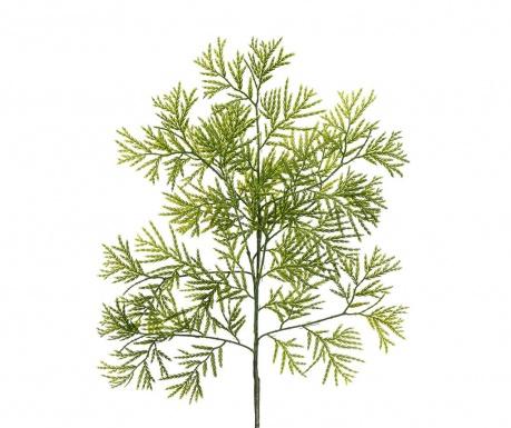 Gardenia Műnövény