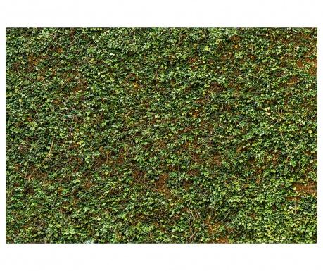 Тапет Ivy Wall 254x366 см