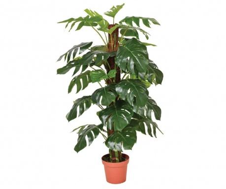 Umjetna biljka u posudi za cvijeće Philodendron
