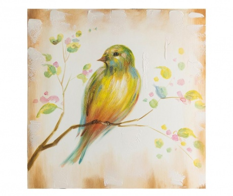 Obraz Colourful Bird 60x60 cm