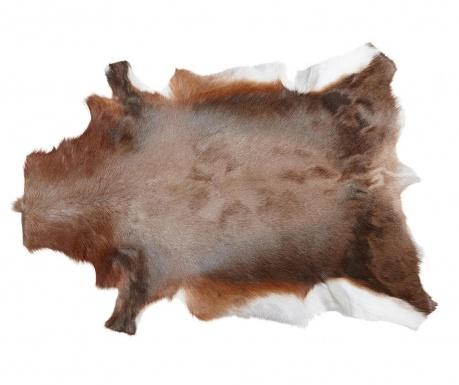 Blesbok Szőnyeg 78x103 cm