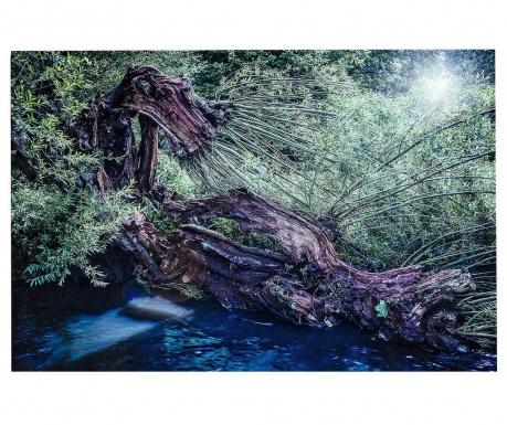 Obraz Forest 80x120 cm
