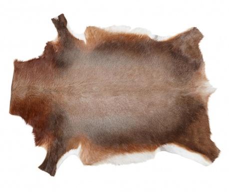 Blesbok Szőnyeg 76x108 cm