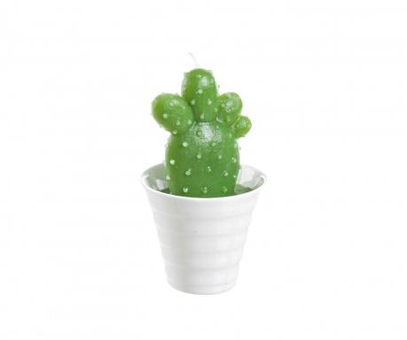 Świeczka Dessert Cactus