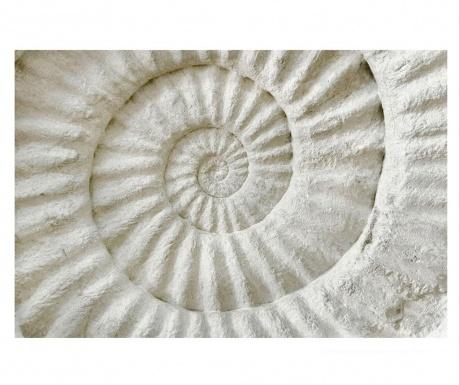 Obraz Shell 80x120 cm