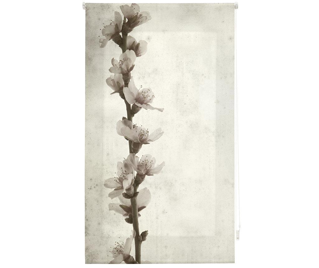 Growth Roletta 100x180 cm