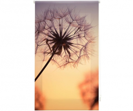 Fotoroleta Dandelion Sunset