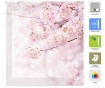 Rolo zavesa Cherry Blossom 160x180 cm