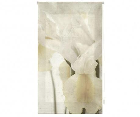 Rolo zavesa Fleur de Lis