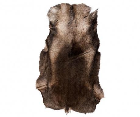 Jelenova kožuh Gradient North 100x120 cm