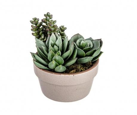 Roślina sztuczna w doniczce Nevada Succulent