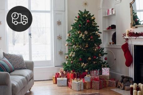 Коледната елха