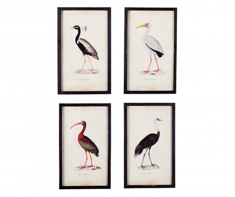Set 4 tablouri Birds 30x50 cm