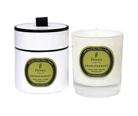 Dišeča sveča Parks Vetiver & Lavender