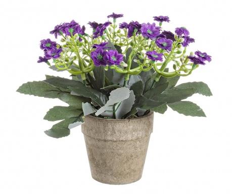 Joy Dark Purple Művirág virágcserépben