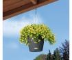 Set - cvetlični lonec z avto-namakalnim sistemom in viseče držalo Nido Grey
