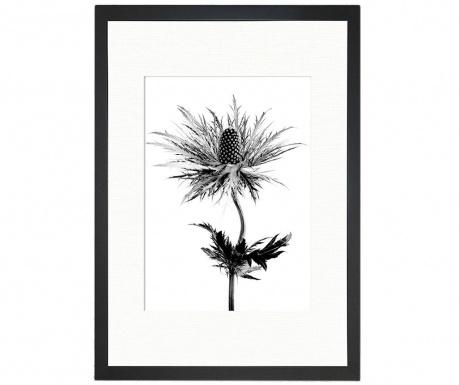 Obraz Thistle Vibes 24x29 cm