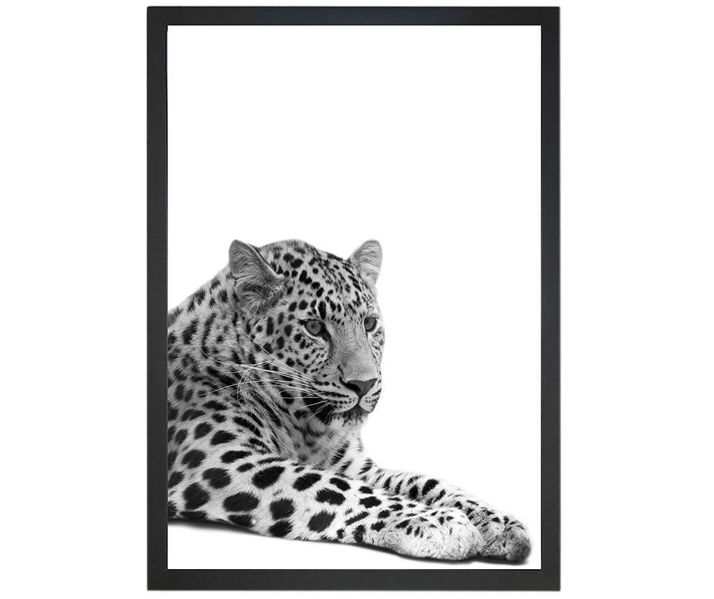 Slika Lying Leopard 24x29 cm