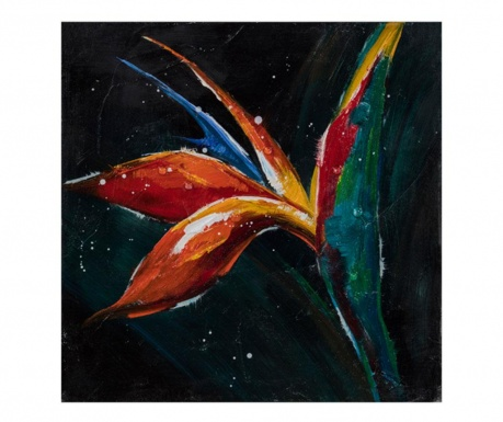 Obraz Gallery Bird of Paradise 40x40 cm