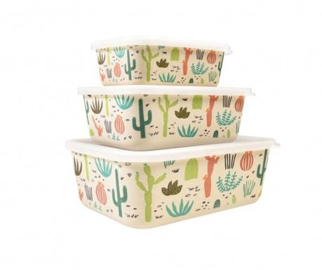 Set 3 kutije za hranu Desert in Bloom