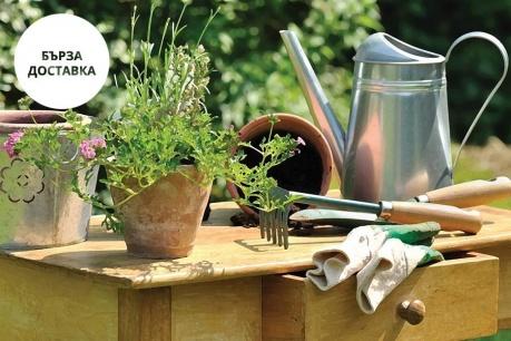 Градина Esschert Design