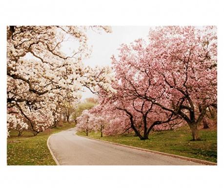 Πίνακας Spring