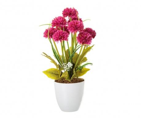 Umelá rastlina v kvetináči Crysanthenum Purple