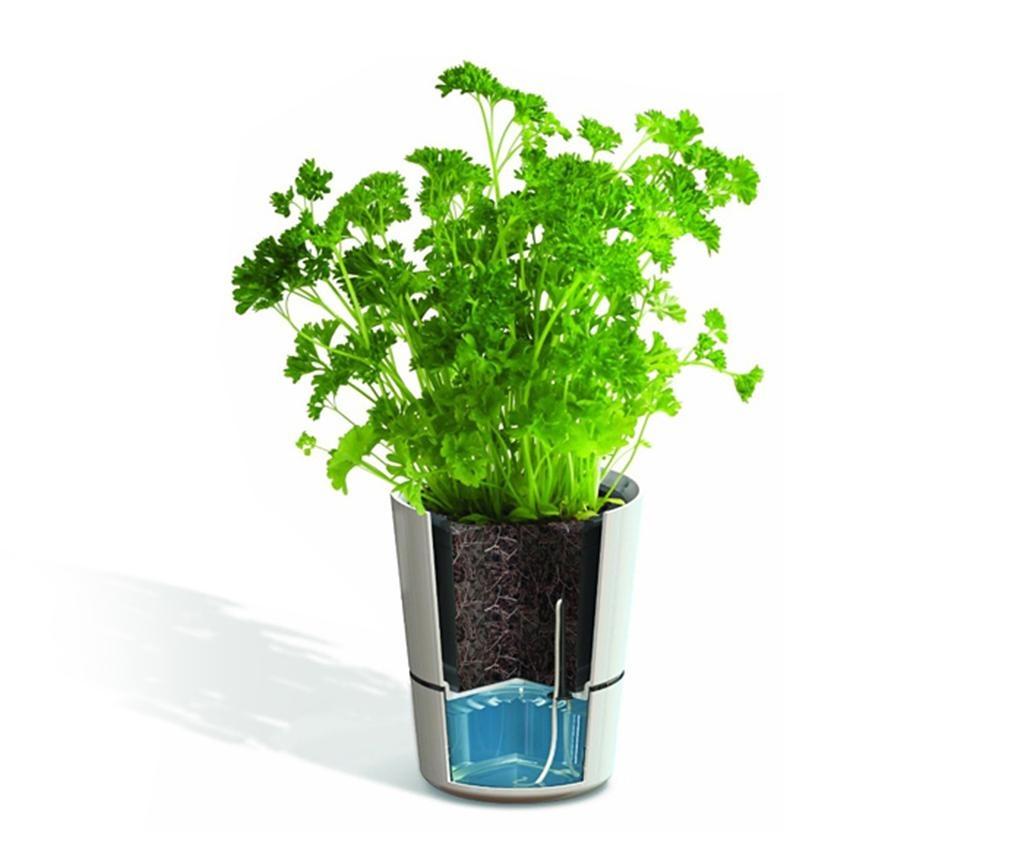 Hydro Herb Blue 2 db Virágcserép önlocsoló rendszerrel