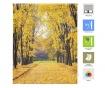 Forever Autumn Roletta 80x180 cm