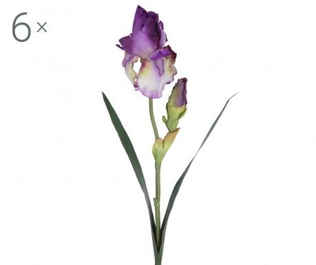 Sada 6 umělých květin Giaggiole Violet