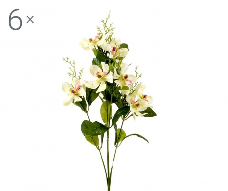 Sada 6 umělých květin Orchidea Vanda Green