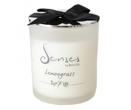 Lumanare parfumata Elorza Lemongrass M