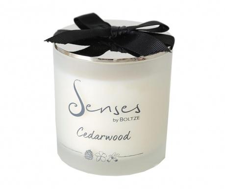 Świeczka zapachowa Elorza Cedarwood