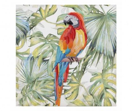 Slika Parrot 80x80 cm