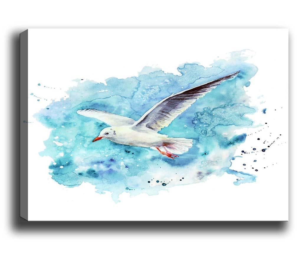 Seagull Kép 70x100 cm