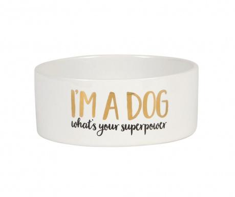 Skleda za pasjo hrano A Dog