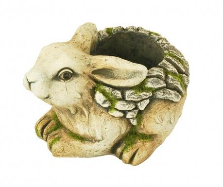Ghiveci Rabbit Conejo