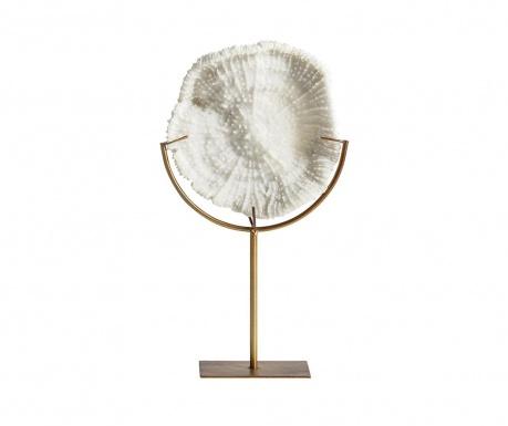 Dekoracja Fossil Concha M