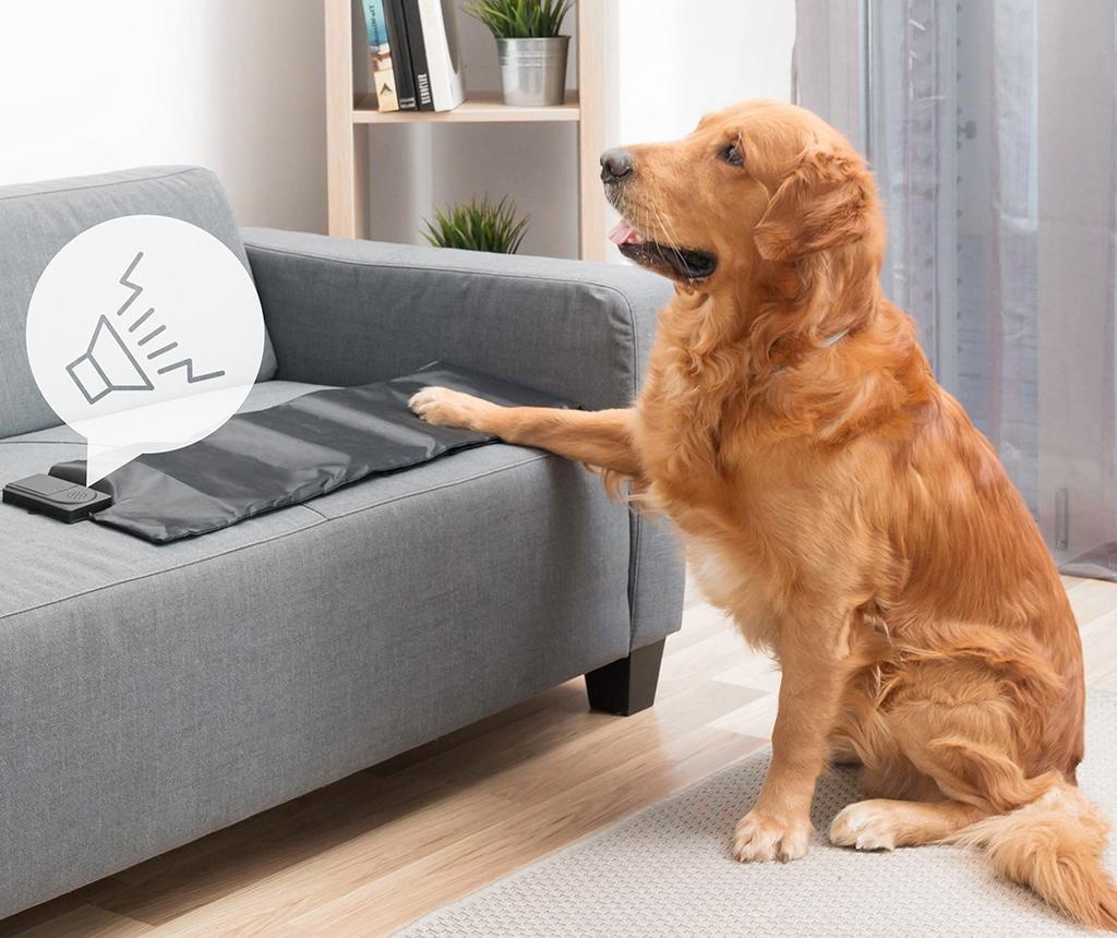 Kobereček na výcvik psů InnovaGoods Dog