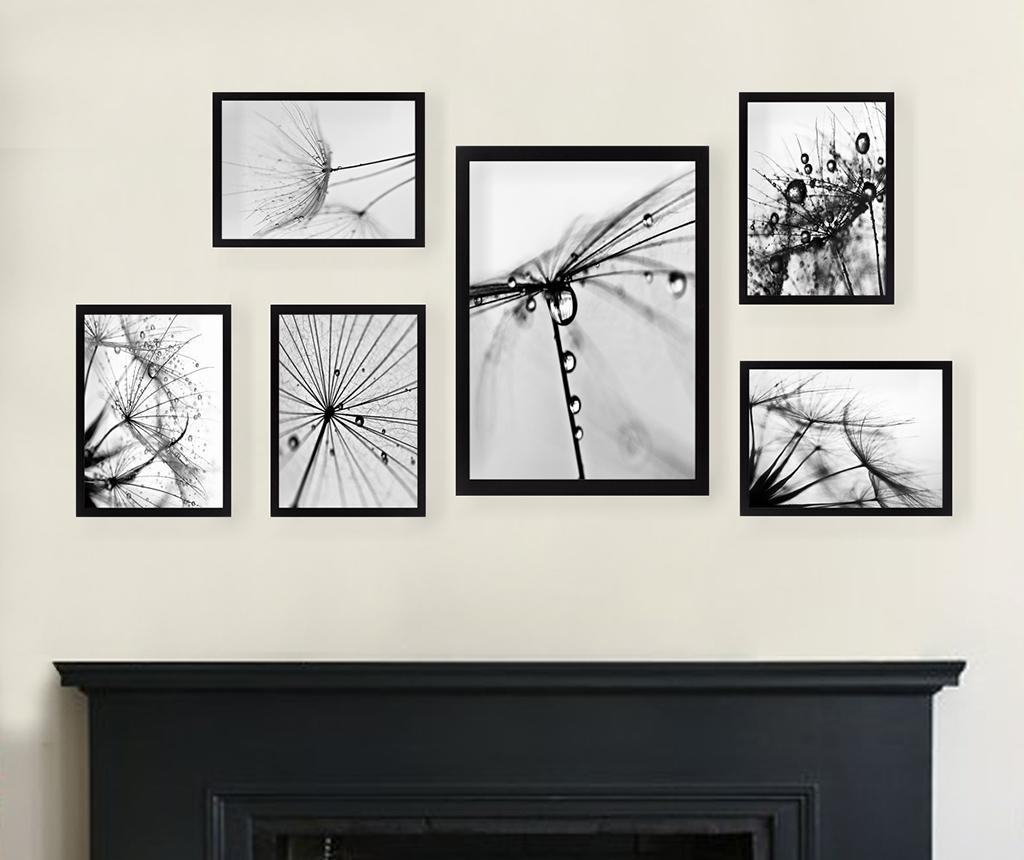 Zestaw 6 obrazów Dandelion