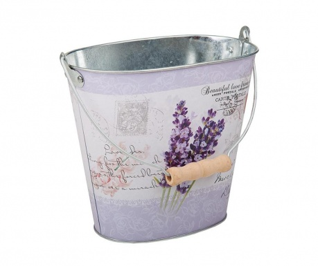 Саксия Lavender