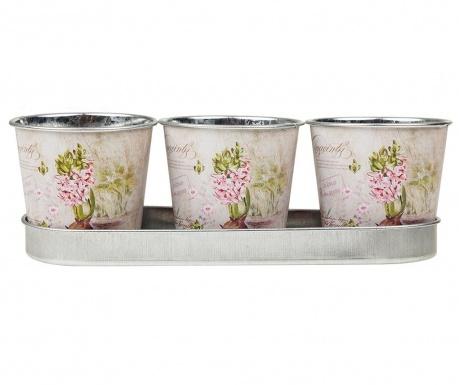 Set 3 posod za cvetlične lonce in pladenj Flowers Delivery