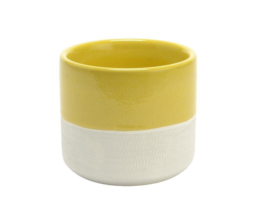 Sung Yellow Virágcserép